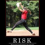 Risk-Vertical - 2017 Saam